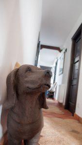 alojamientos en soria que admiten perros